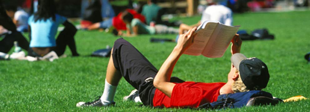 Summer school student reading on the grass at San Francisco State University