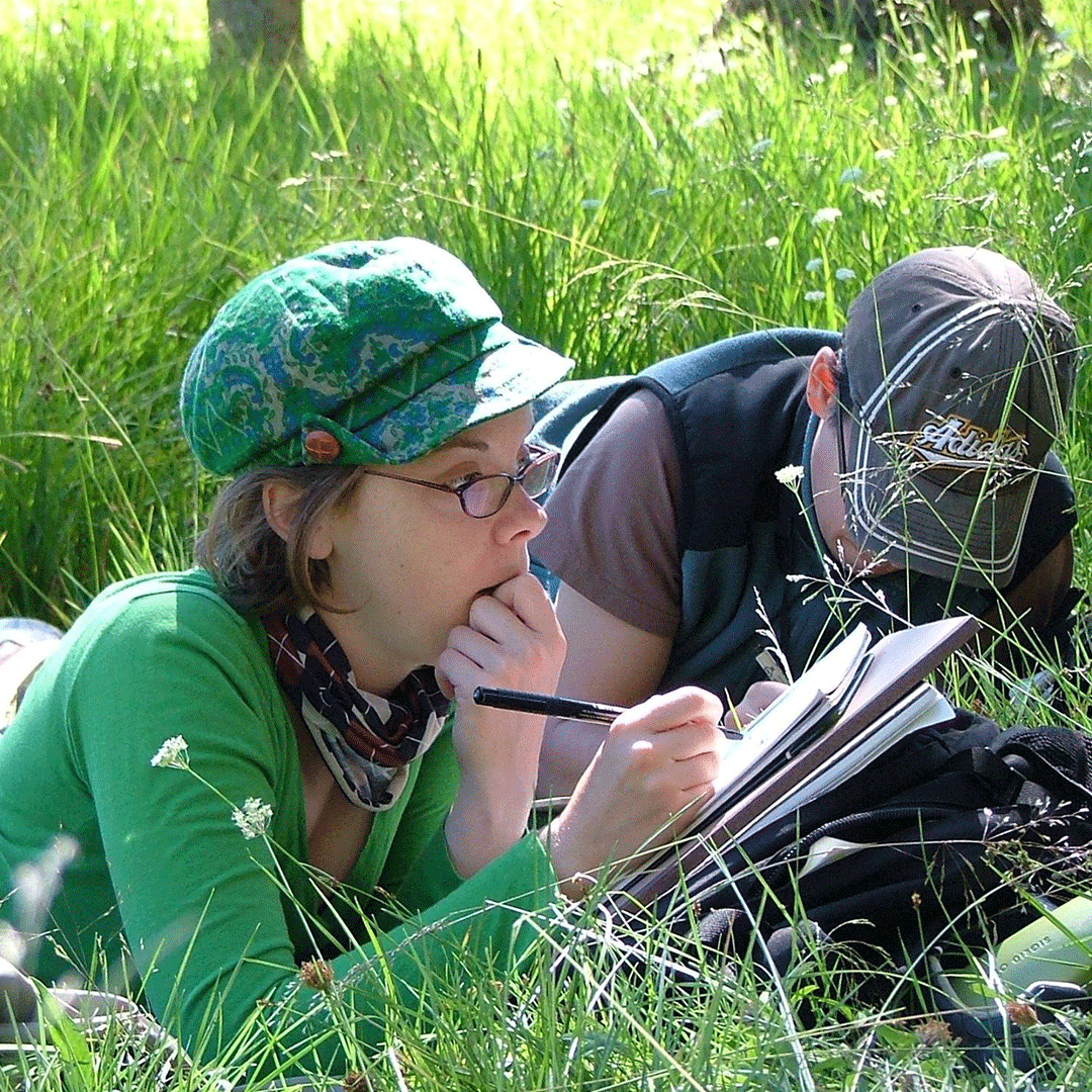 Students study in the grass